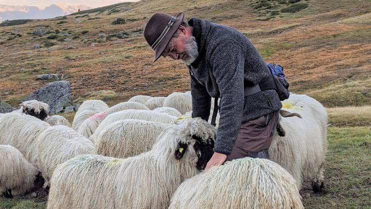Zu viele Pflichten lägen momentan bei den Schafbesitzern, findet Markus Dörig.