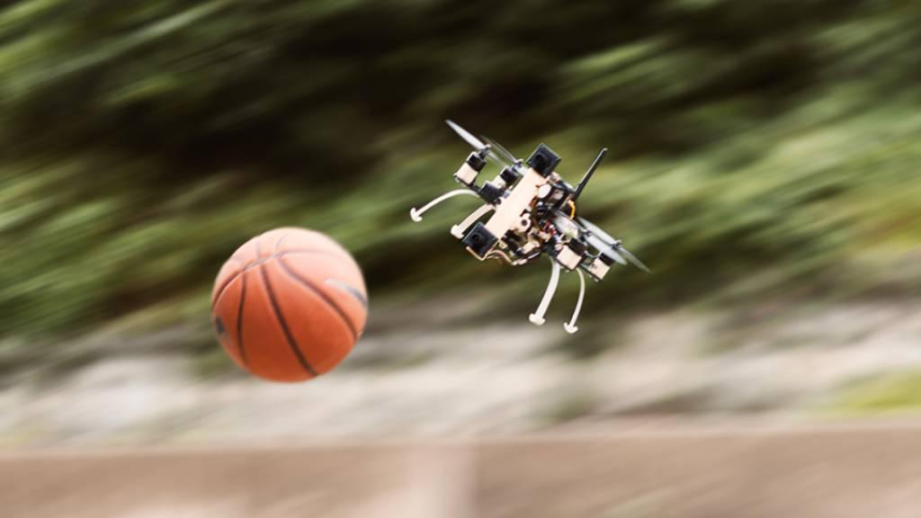 Forschende von der Uni Zürich haben eine Kamerasteuerung entwickelt, die Drohnen so flink macht, dass sie im Völkerball gewinnen könnten (zVg)