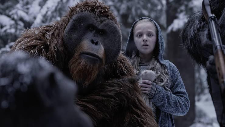 Die «Planet of the Apes»-Filme handeln von intelligenten Affen, vor denen sich Menschen  fürchten. Nur wenige, wie das Mädchen Nova (Amiah Miller), finden Vertrauen zu ihnen.