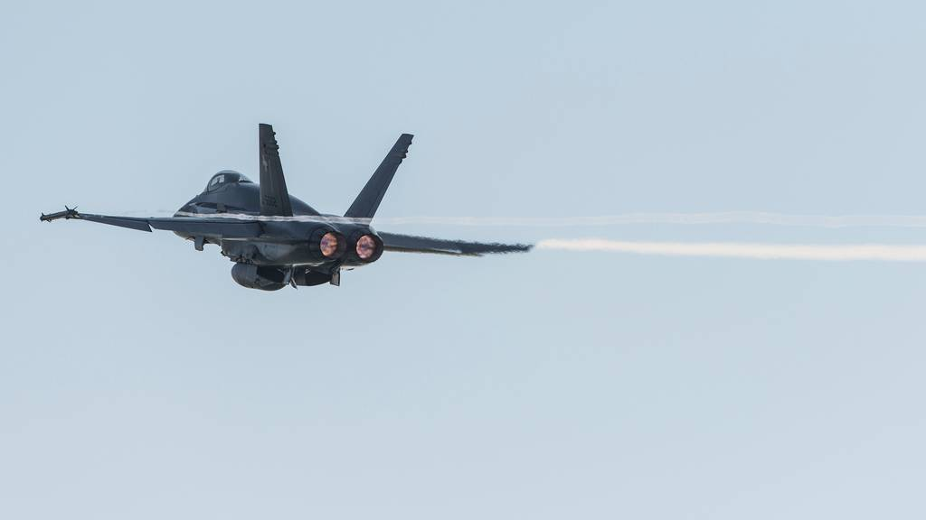 Die F/A-18 stürzte während eines Luftkampftrainings ab, der Pilot rettete sich mit dem Schleudersitz. (Symbolbild)