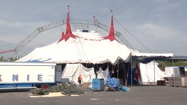 Berner Allmend: Zirkus Knie verspricht Show-Neuheiten