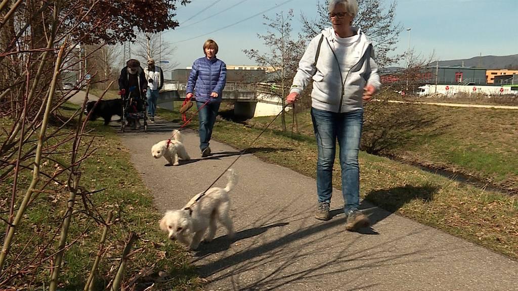 «Pensionäre-auf-Hundetour»