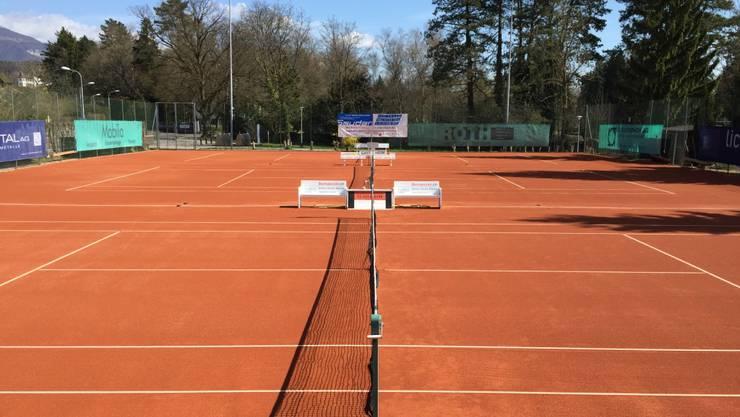 Der Tennisplätze im Herrenweg Solothurn werden sehr gepflegt und die Natur rundherum ist wunderbar angenehm.