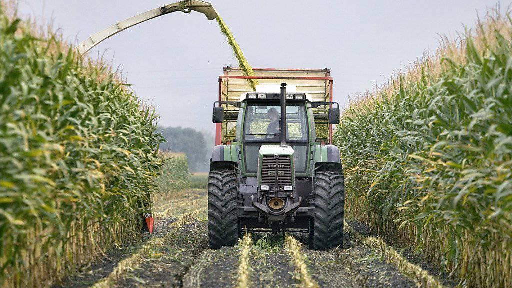 Mit einer Studie will die Denkfabrik Avenir Suisse eine Diskussion über die Agrarpolitik und den Abbau des Grenzschutzes für Lebensmittel anregen. (Themenbild)