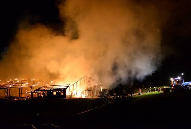Flammeninferno in der Nacht auf Samstag, 18.August.