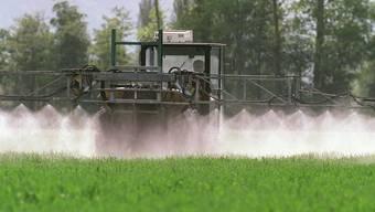 Gegner halten den Pflanzenschutzmittel-Wirkstoff in «Glyphosat» für krebserregend.. (Symbolbild)