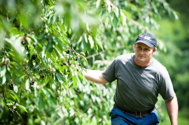 Martin Schmid, Landwirt aus Gipf-Oberfrick ist froh um die Helfer aus fernen Ländern
