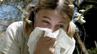 Für Allergiker ist der Frühling nicht immer eine Freude
