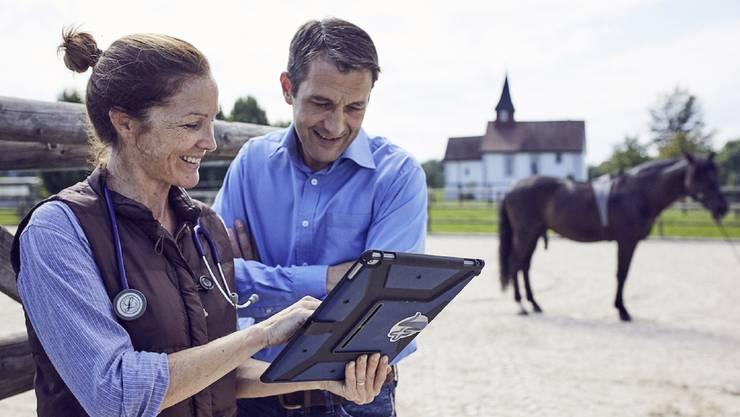 Ein neues dialoges Diagnosesystem ermöglicht es, die Körperfunktionen von Pferden in deren gewohnter Umgebung zu erfassen.