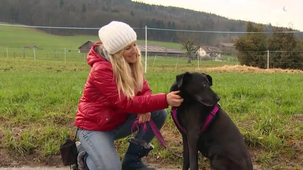 Tierisch: Was tun bei Angst vor Hunden