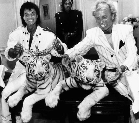 Roy Horn und Siegfried Fischbacher zu ihrer Glanzzeit in Las Vegas mit zwei weissen Tigern in den 80ern.