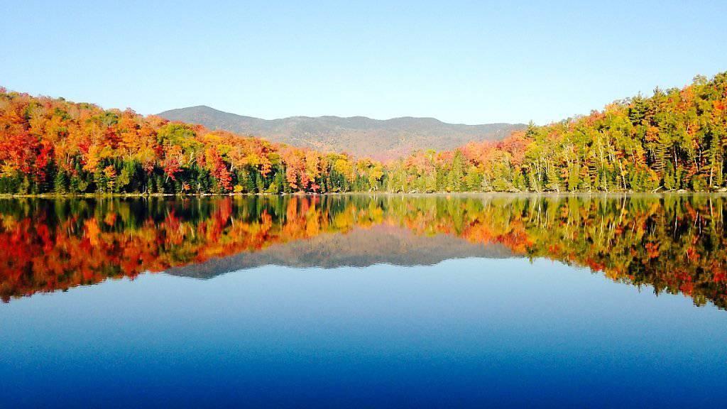 3 Billionen Bäume auf der Welt liefern der Menschheit sauberes Wasser, saubere Luft und wunderschöne Landschaften. (Bild: Handout)