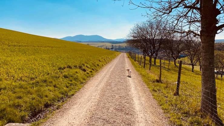 So (alleine) verbringen unsere Leser ihre Freizeit in der schönen Aargauer Natur