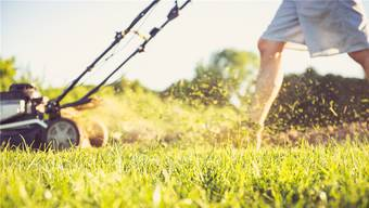 In Zeihen fühlen sich einige Einwohner durch Rasenmäher in der Mittagsruhe gestört. Symbolbild/Shutterstock