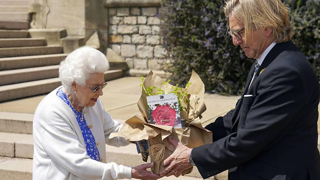 Die britische Königin Queen Elizabeth II. hat zu Ehren ihres verstorbenen Mannes Prinz Philip eine Rose gepflanzt. Prinz Philip wäre morgen Donnerstag 100 Jahre alt geworden.