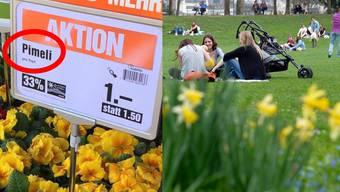 Die ersten Frühlingsgefühle beschwingen. Das gilt auch für die Migros – wie das Aktions-Schild zeigt.