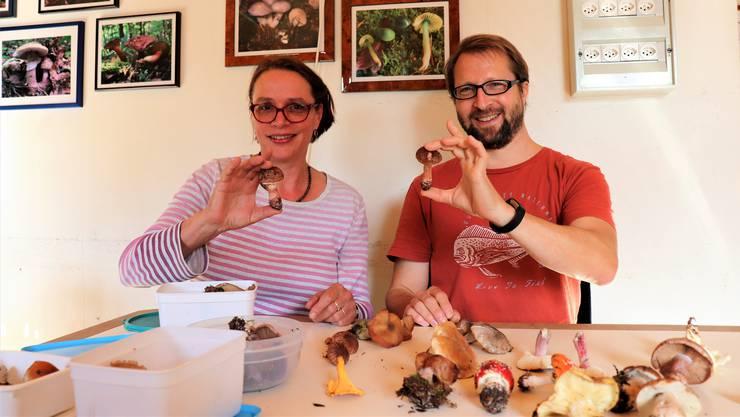 Reni Sibold und André Schnellmann sind als Pilzkontrolleure von der Stadtpolizei angestellt.