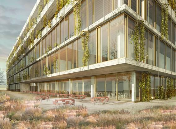 So wird der Neubau des Schweizerischen Tropen- und Public Health-Institut im Gewerbegebiet Bachgraben in Allschwil aussehen.