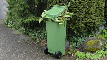 Nicht allen ist klar, was wirklich in einen Grüncontainer gehört und was nicht.