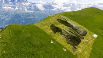 Das Werk symbolisiert nach Angaben der Initiatoren des Projekts die Freundschaft zwischen der Schweiz und Frankreich. Im Hintergrund die Dents de Midi.