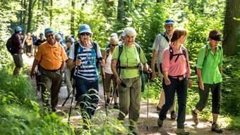 Leserwandern Etappe1: von Wildegg nach Aarau