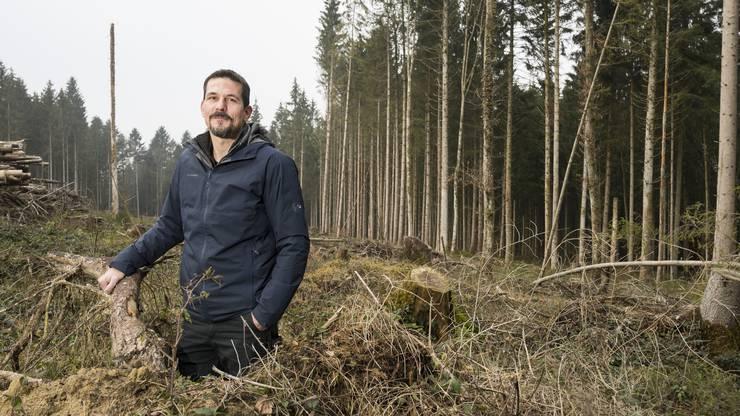 Matthias Kläy hat die Leitung des Forst- betriebes Region Zofingen in einem schwierigen Jahr übernommen.