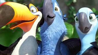 Raphael, Blu und Jewel aus dem 20th Century Fox Film