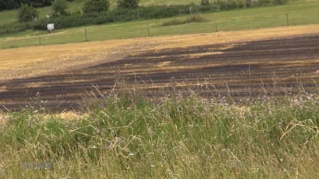 2,5-Hektar-Strohfeld in Brand