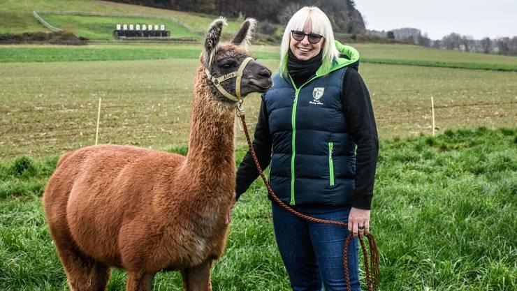 Die Wooly-Stute von Marit Marti ist Vize-Miss Wooly Lama.