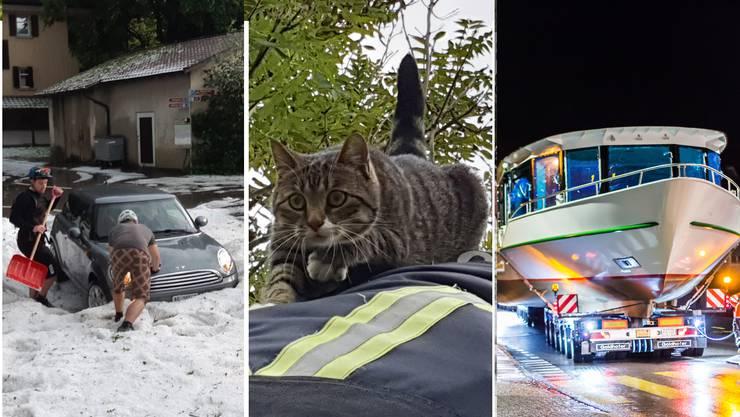Schnee mitten im Sommer – die Feuerwehr, dein Freund und Helfer – ein Schiff kommt gefahren: Bilder, die dieses Jahr für Schlagzeilen sorgten.