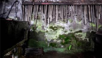Die bemooste Rückwand der Seenger Hammerschmiede, wird – inzwischen von den alten Werkzeugen befreit – als Erstes trockengelegt und erneuert. Mario Heller