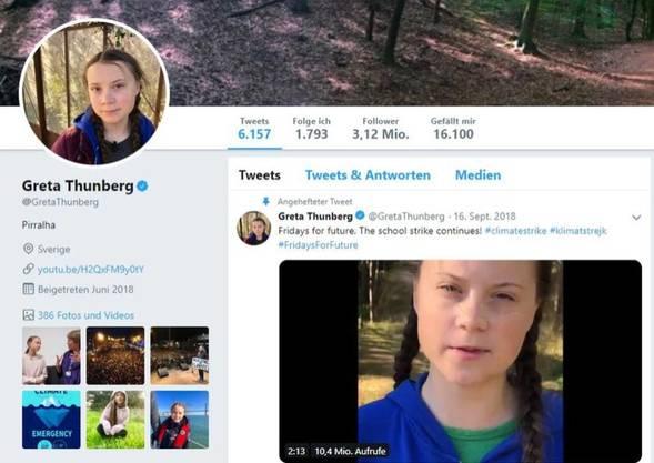 Das Twitterprofil von Greta Thunberg.