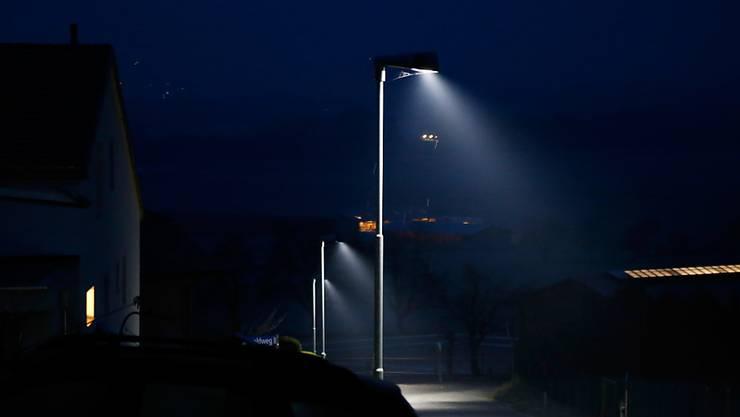 Strassenleuchten haben den Ruf, als ökologische Fallen für Insekten zu wirken. Ein Test soll Licht ins Dunkeln bringen. (Symbolbild)