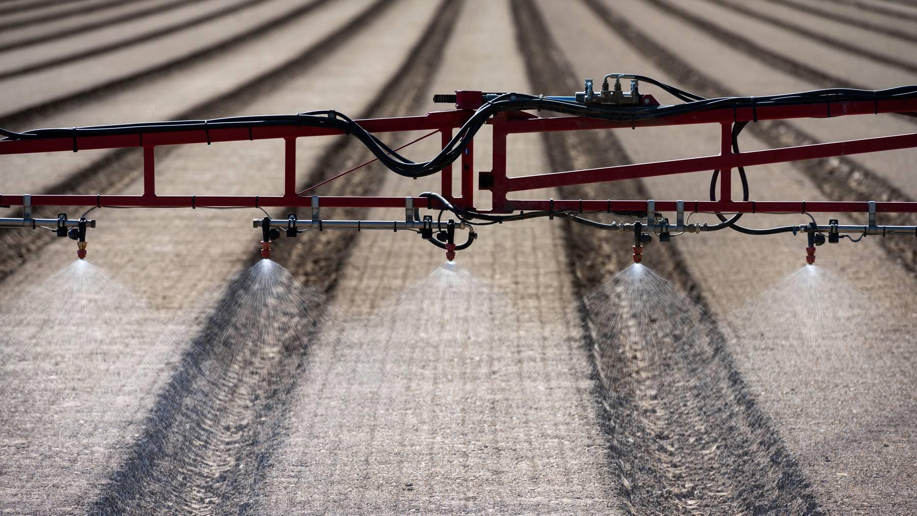 Der Nationalrat will den Einsatz von Pestiziden reduzieren. (Symbolbild)