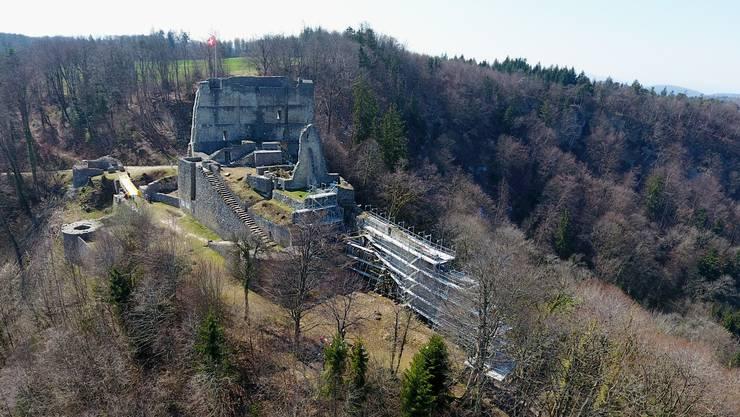 Die Ruine Farnsburg von Nordosten her gesehen, im Vordergrund eingerüstete Mauern.