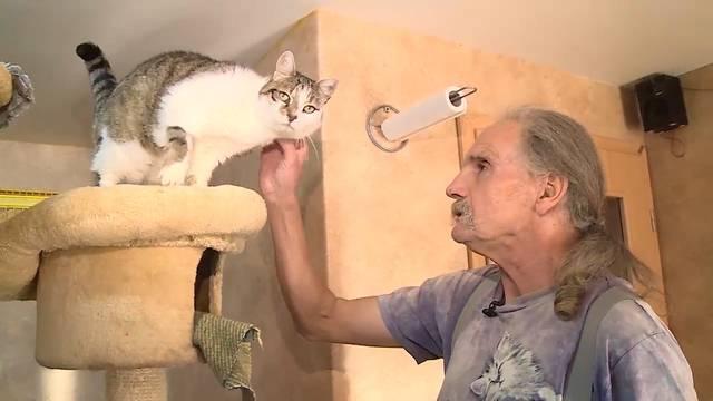 Ein Einfamilienhaus für die Katz: Sieben Tage die Woche kümmert sich Günther Weber um seine Katzen.
