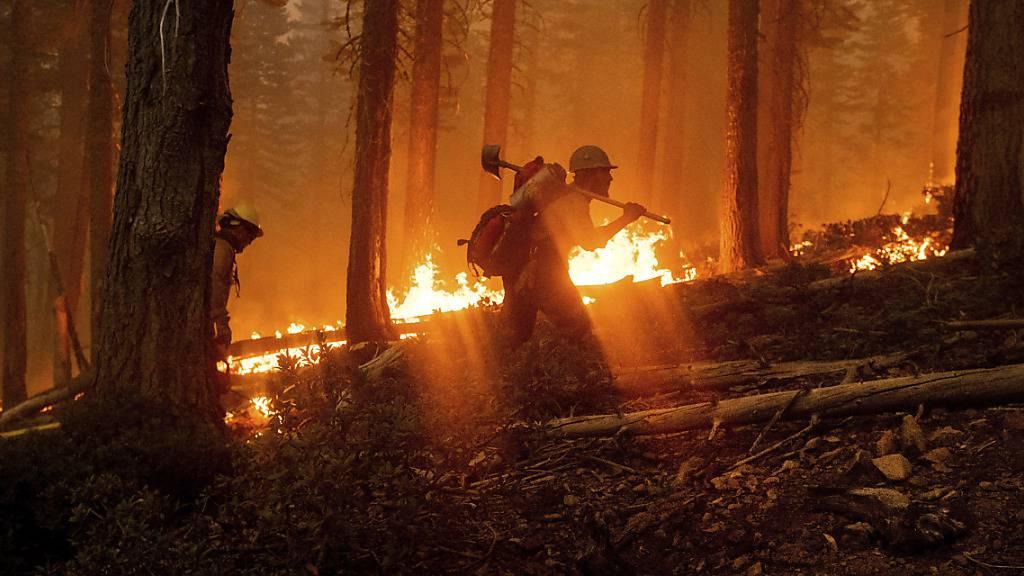 Brände an US-Westküste toben weiter
