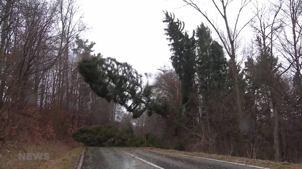 Sturmwarnung: Windgeschwindigkeiten bis zu 100kmh im Flachland