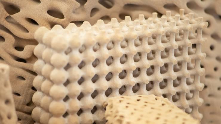 So ähnlich könnten die Strukturen dereinst aussehen, an denen ETH-Forschende zum Wiederaufbau von Korallenriffen arbeiten.