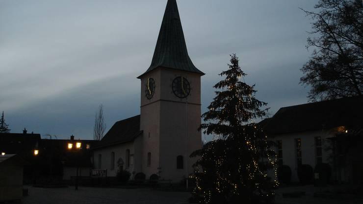 Die Tanne, die ein Weihnachtsbaum sein wollte, hat ihr Ziel erreicht.