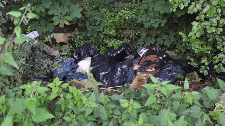 Illegal entsorgt: Hinter dem Stoffelbach-Parkplatz glich es einer Müllhalde. (mke)