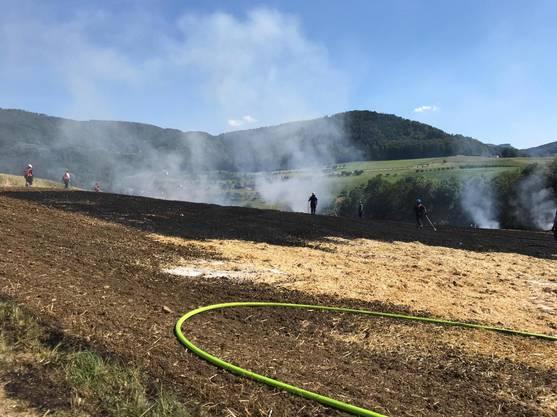 Das Feuer breitete sich auf einer Fläche von circa einem Hektar aus.