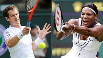 Mann gegen Frau: Andy Murray will sich mit Serena Williams messen