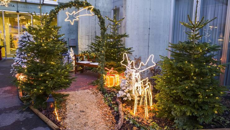 Schicken Sie uns ein Foto Ihrer besonderen Weihnachtsbeleuchtung.