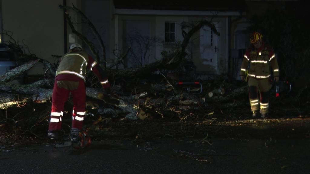"Sturmtief ""Petra"" fordert einen Leichtverletzten in Bern"