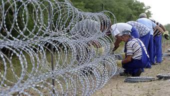 Geht es nach dem Willen von SVP-Nationalrat Heinz Brand, soll auch die Schweizer Grenze durch Zäune gesichert werden.