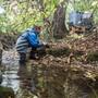 Wasserprobenentnahme am Eschelisbach im Thurgau. Die Pestizid-Belastung ist hier zeitweise so hoch, dass Fortpflanzung, Entwicklung und Gesundheit von Pflanzen, Tieren und Mikroben gefährdet sind.