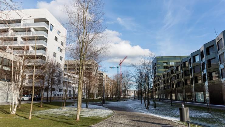 Wo früher Brachen das Schlieremer Stadtbild dominierten, sind in den letzten Jahren ganze Quartiere neu entstanden.