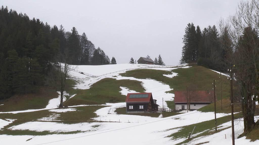 Kurznachrichten: Windpark Oberegg, Bilanz Bühler, Unfall