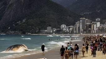 Menschenmassen bestaunen den Walkadaver am Ipanema-Strand von Rio de Janeiro.